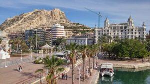 solicitar certificado online Alicante